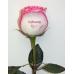 Розы с надписью